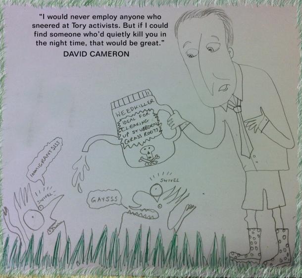Cameron vs Grassroots Tories